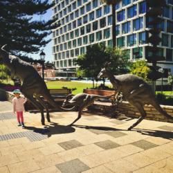Setangkup Cerita Liburan Musim Panas di Australia