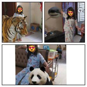 Kebun Binatang di Rumah